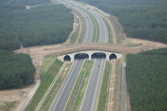 Budowa autostrady A2 na wschód od Warszawy – pierwsze utrudnienia