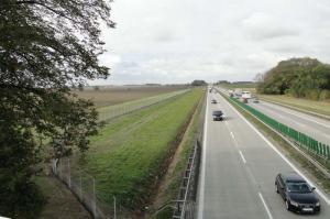 Podróżujący A4 Wrocław – Krzyżowa będą chronieni przed zwierzętami