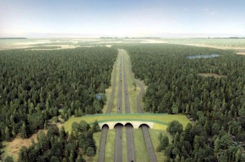Droga S6 - ekspresowa arteria polskiego wybrzeża