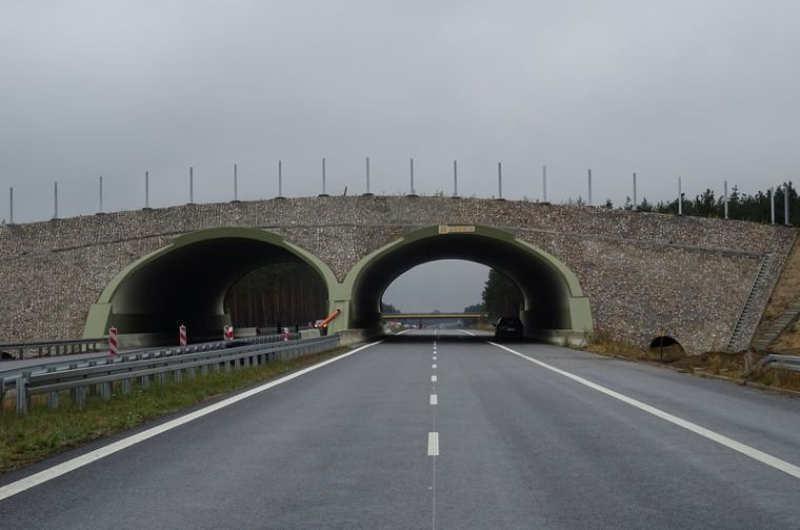 Droga ekspresowa S3 Zielona Góra - Niedoradz - Nowa Sól