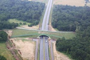 Droga krajowa nr 98