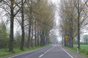 Droga wojewódzka nr 252