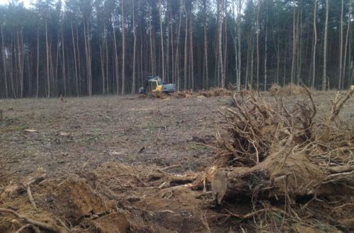 Pierwszy odcinek drogi ekspresowej S10 - obwodnica Wałcza wystartowała