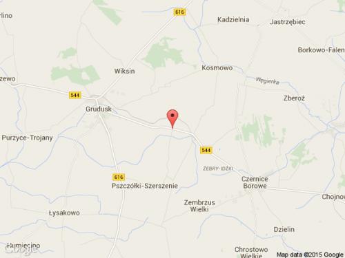 Wiśniewo (koło Gruduska) (mazowieckie)