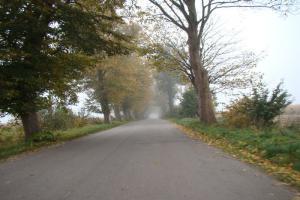 DW387: nowa droga w Góry Stołowe