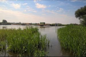 Będzie nowy most na Pilicy w Osuchowie