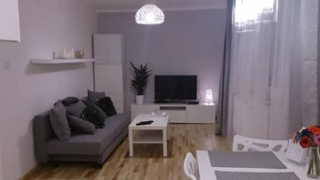 1 bedroom city center apartment - Katowice