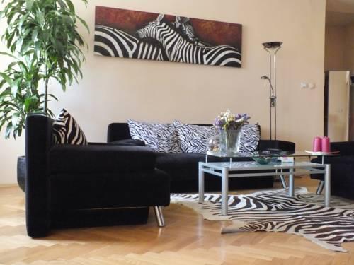 Zebra - Kraków