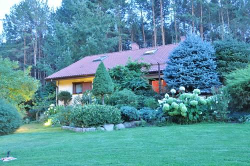 Willa Green Tree - Lubiewo