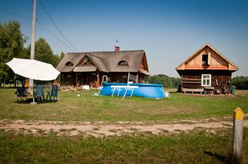 Apartament pod Strzechą - Mędrzechów