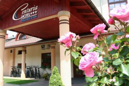 Hotel Centuria - Ogrodzieniec