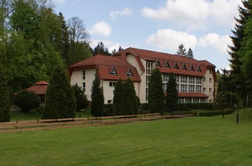 Hotel i Restauracja Złoty Las - Wałbrzych