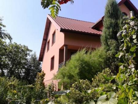 Villa Near Kampinos National Park - Błonie