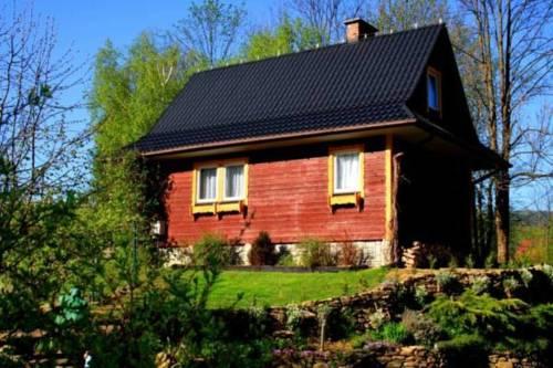 Domek Tosia - Bukowiec