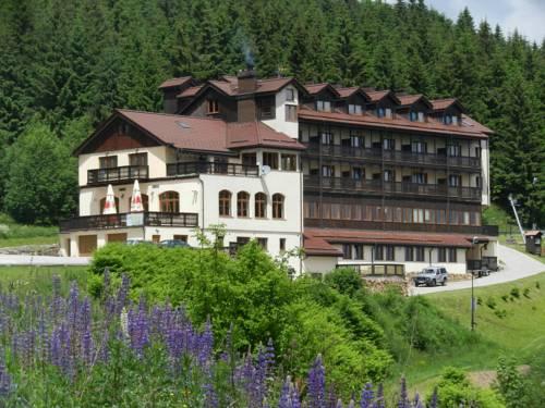 Hotel Zieleniec - Duszniki-Zdrój