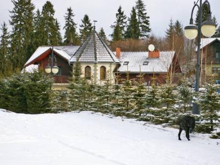 Villa Falsztyn 2 - Falsztyn