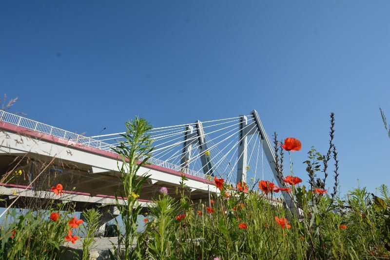 Obwodnica Krakowa: Droga S7 z nowym mostem przez Wisłe