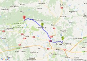 Koziegłowy (wielkopolskie) - Szamotuły (wielkopolskie) - Chojno (wielkopolskie)